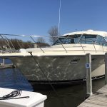 Fishing Charter in Michigan and Muskegon