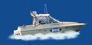 Balls Deep Fishing Charters